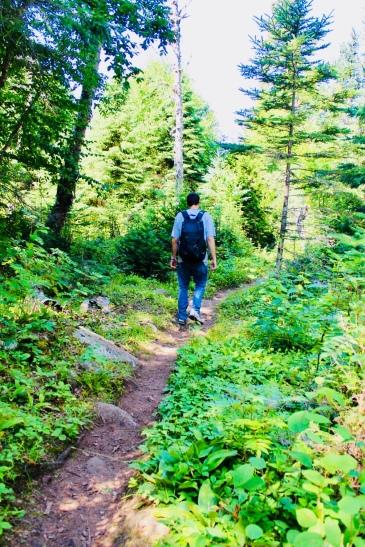 Trail Towards Grace Creek Overlook