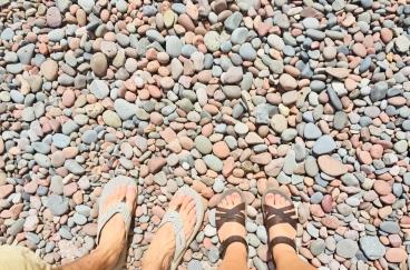 Sugarloaf Cove Shoreline