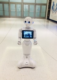 Robots in the Mall